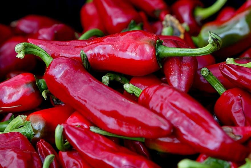 chili pepper espelette espelette pepper basque country1