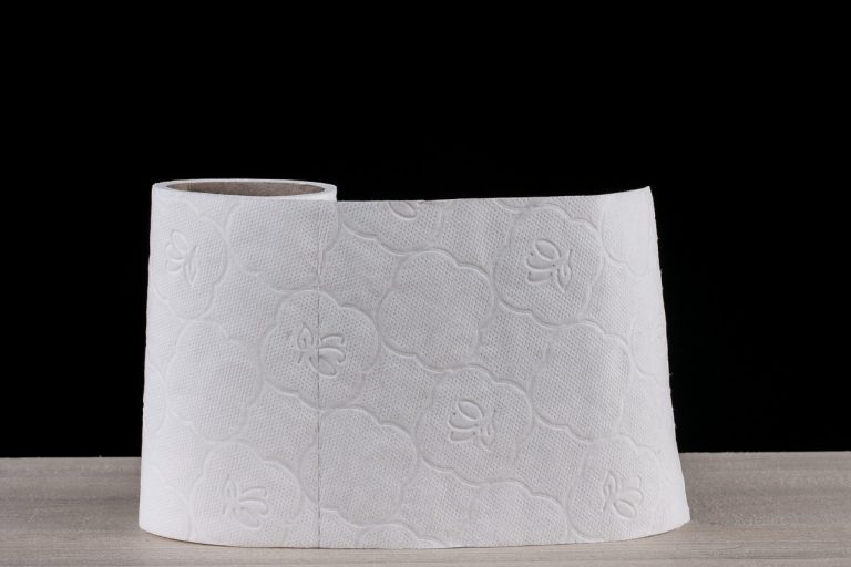 Creative Ideas On How to Use Paper Towels toilet paper 2923445 12801