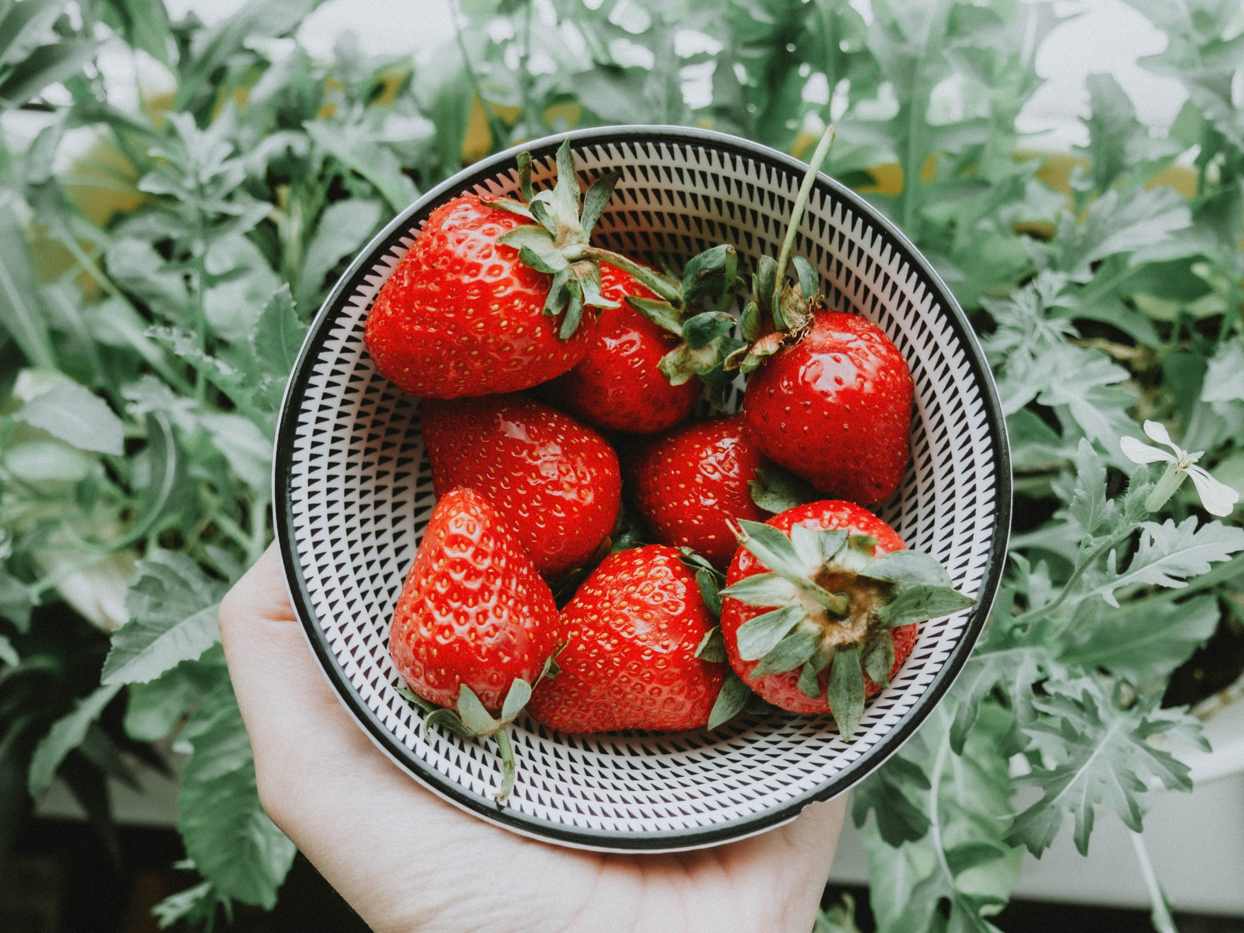 strawberries scaled
